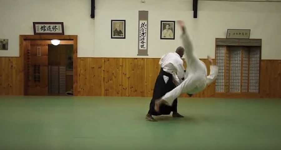 Aikido defence from a hook punch