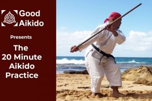 20 Minute Aikido, Aikido, The idea, martial arts, aikido in your living room, living room, tai no henko